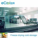 O grande armazenamento frio super super de baixa temperatura de capacidade elevada do volume e Refrigerate o equipamento para o alimento da secagem de gelo