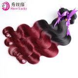 La Chine usine vierge non transformés de meilleure qualité de gros Ombre malaisien de cheveux humains