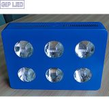 COB LED Grow Light 756W voor Hemp Herb Plant Growing