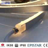 屋外の輪郭の装飾のための暖かい白24V LEDネオンロープライト