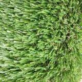 Campioni libero 40mm che modific il terrenoare o erba artificiale del campo da giuoco