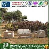 Софа мебели софы ротанга мебели сада установленная напольная (TG-JW37)