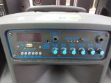 Feiyang/Temeisheng altavoz portátil recargable de alta gama con carro---SL12-01