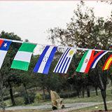 Empavesados durables personalizados a todo color del indicador nacional del poliester