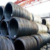 Vergella del materiale da costruzione per la fabbricazione del chiodo (SAE1006 SAE1008)