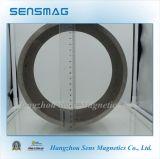 De aangepaste Permanente Magneet van de Ring AlNiCo met RoHS voor Motor