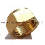 Protezioni di estremità d'ottone degli accessori per tubi