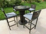 Rattan Barstool con l'insieme esterno della mobilia della benna di Table&Ice