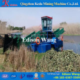 Récolte professionnelle Hyacinthe à l'eau