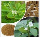 Выдержка Fenugreek выдержки семени Fenugreek для еды и дополнения