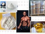 Esteróides naturais do edifício do músculo do CAS 431579-34-9 do suplemento a Sarms do inibidor de 99% Yk11 Myostatin para o Bodybuilding