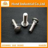 Tornillo completo métrico profesional del cuello de la cuerda de rosca del acero inoxidable A2