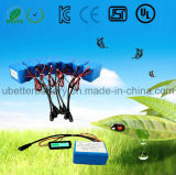 Manufactory 11.1V 3s2p 5600mAh Lithium Ion Battery for E-Bike