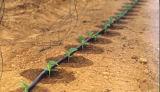 Tubo di innaffiatura di plastica di irrigazione goccia a goccia del PE