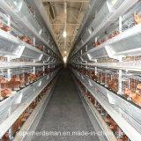 Auto exploração avícola Machinery para Layers e Broilers