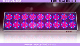 a planta da flor do diodo emissor de luz do poder superior 800W cresce a luz