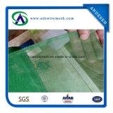 보통 직물 플라스틱 Windows 스크린 (남아메리카에 수출)