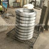 炭素鋼のGOST DIN Enはフランジを造った
