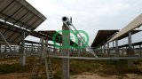 Granja solar que monta la estructura de acero
