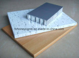Aluminium de panneau de nid d'abeilles avec la peinture (heure P052)
