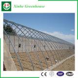 Serra di alluminio della pellicola del PE di profilo del blocco per grafici d'acciaio di agricoltura