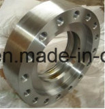 OEM Casting and Usining Stainless Steel Flange