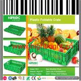 Moldeo por inyección de plástico vegetal plegable y cajón de la fruta