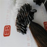 Das extensões pre ligadas do cabelo da qualidade superior cabelo do anel micro