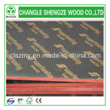Madera dura Core 18m m Film Faced Plywood