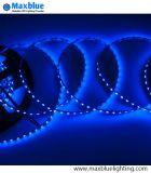 12/24VDC schmales Streifen-Licht-Farbband der Breiten-5mm SMD3528 5mm LED