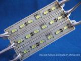 6 módulo do diodo emissor de luz das microplaquetas SMD 5730 para anunciar sinais