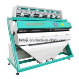 Linha de processamento de feijão Use classificador de cores
