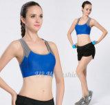 Горячие установленные краткости йоги бюстгальтера йоги повелительниц Sportwear