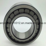 Complemento completo do rolamento de roletes cilíndricos SL182214