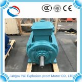 Ye3高性能三相AC電動機