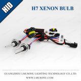 Bulbo OCULTADO 12V 35W del xenón H7