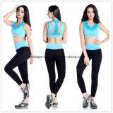 高品質の女子体操の摩耗の連続したブラの適性のズボン