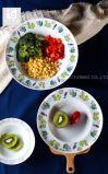 """de """" ceramische Plaat van Diner 6 8.5 9 met de Aangepaste Druk van het Embleem"""