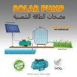 太陽DCポンプ、必要性のコントローラ無し、DC 12V、DC 24V、Qb60、Qb12V