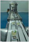 Empaquetadora modificada de la atmósfera de los alimentos de preparación rápida