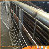 2 cancelli galvanizzati del campo del TUFFO caldo delle rotaie