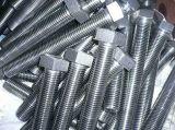 M12 Zinc standard en acier vis T et T spécial et les écrous de serrage de boulon