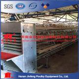 Pour la couche d'équipement de la cage de poulet Poulet Cage /animal