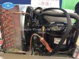 Electric COMPRESSEUR AC pour congélateur/frigo