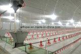 鶏の挿入ラインのための自動家禽装置