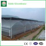 Migliore serra di vendita di agricoltura della Multi-Portata per l'orticoltura