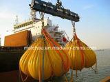 20 toneladas grúa o el pescante de carga de prueba de calidad de agua Bolsas