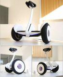 Самокат Ninebot Chariot нового колеса способа 2 миниый электрический