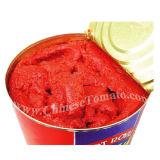 Aséptica y orgánica en latas de pasta de tomate de China de