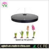 Hot of halls indoor Hydroponic Growing system 50W fill Spectrum LED Grow Light